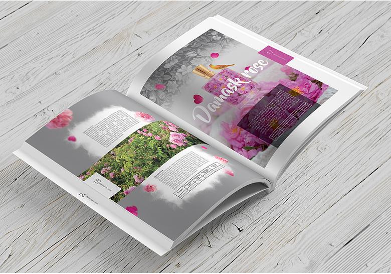 طراحی کاتالوگ محصولات داریس