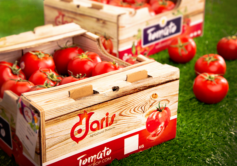 طراحی جعبه صادراتی میوه داریس