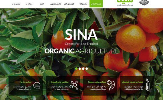 طراحی وب سایت سینا کود