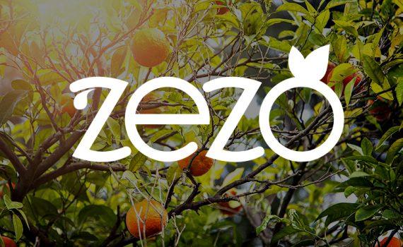 طراحی لوگو برند تجاری zezo
