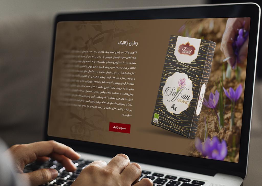 طراحی وبسایت تامسی